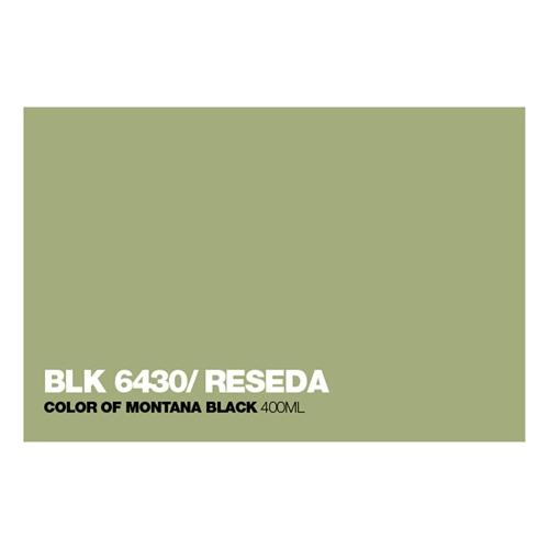 Graffiti Sprühdose BLK6430 Reseda