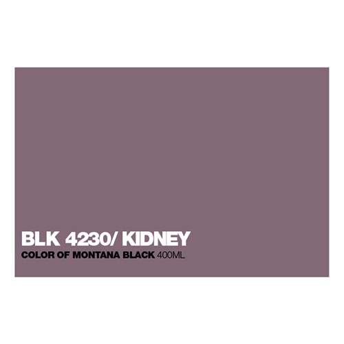 Graffiti Sprühdose BLK4230 Kidney